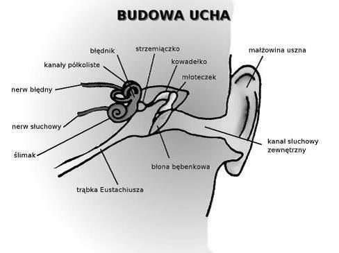 Przyczyny zawrotów głowy